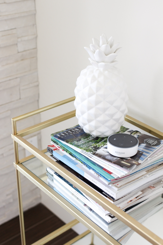 amazon - echo dot - bar cart - lifestyle blog - media