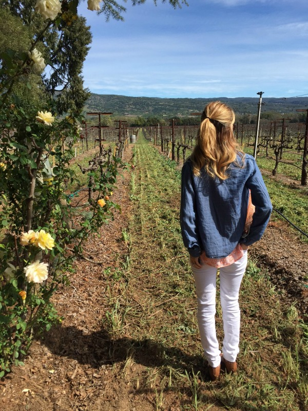 San Francisco, Winery, what to do