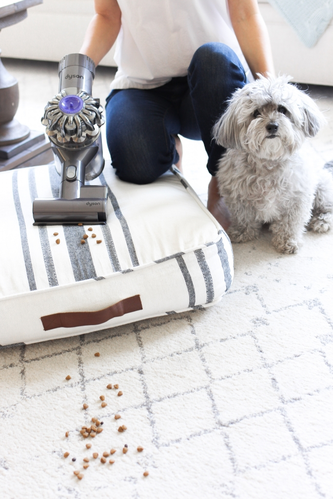Simply Sutter - eBay - vacuum - dyson - spring cleaning